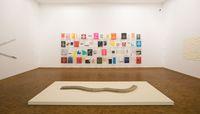 Museum Ludwig Köln, Jac Leirner, Wolfgang-Hahn-Preis 2019, 10.4. – 21.7.2019